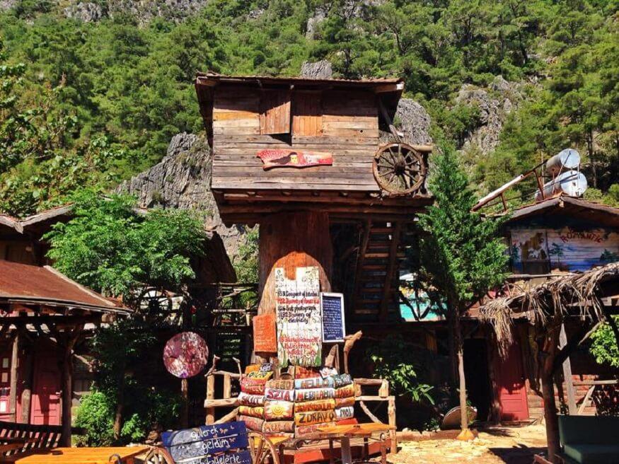 Travel Experiences,best travel experiences sleep in a treehouse_Kadirs Tree House Hostel