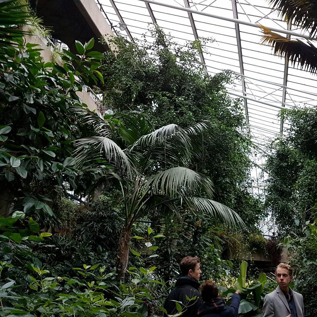 best parks in london barbican conservatory @emma.v.martell