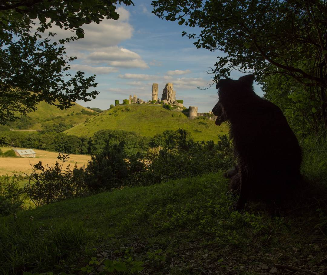 Best Places to Visit in England - Corfe Castle