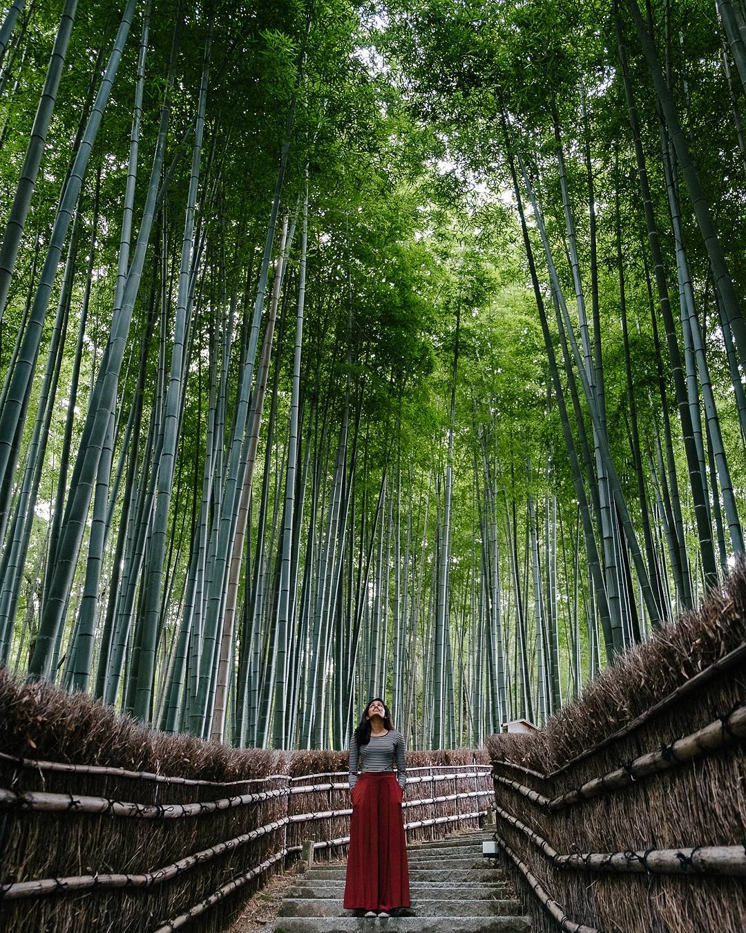 best places to visit in Japan Arashiyama @foundnouns