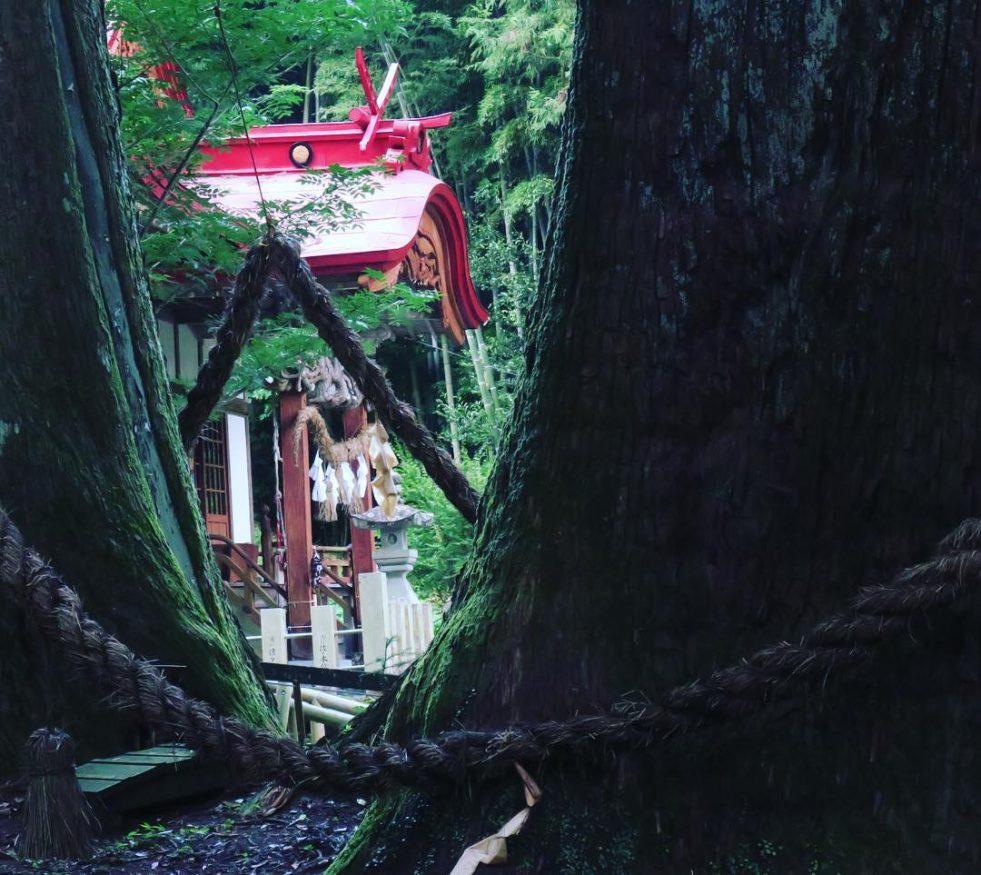 Places to Visit in Japan - Shikoku