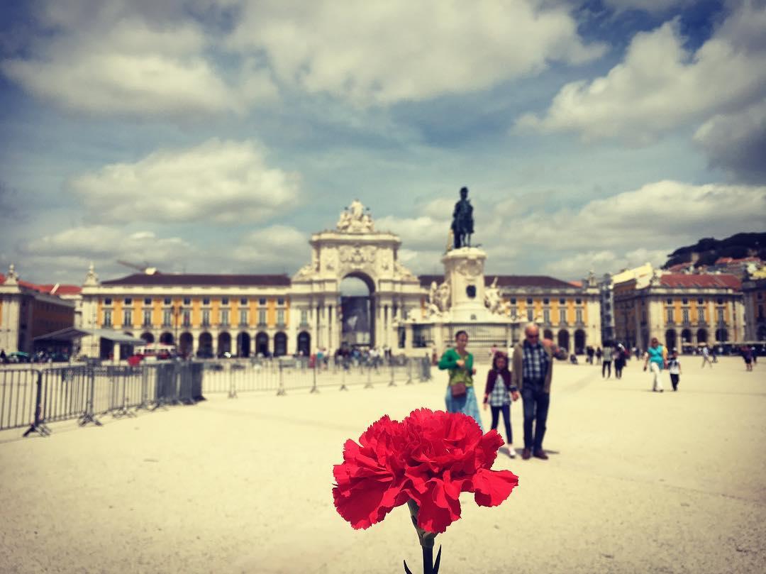 Backpacking Portugal - carnation