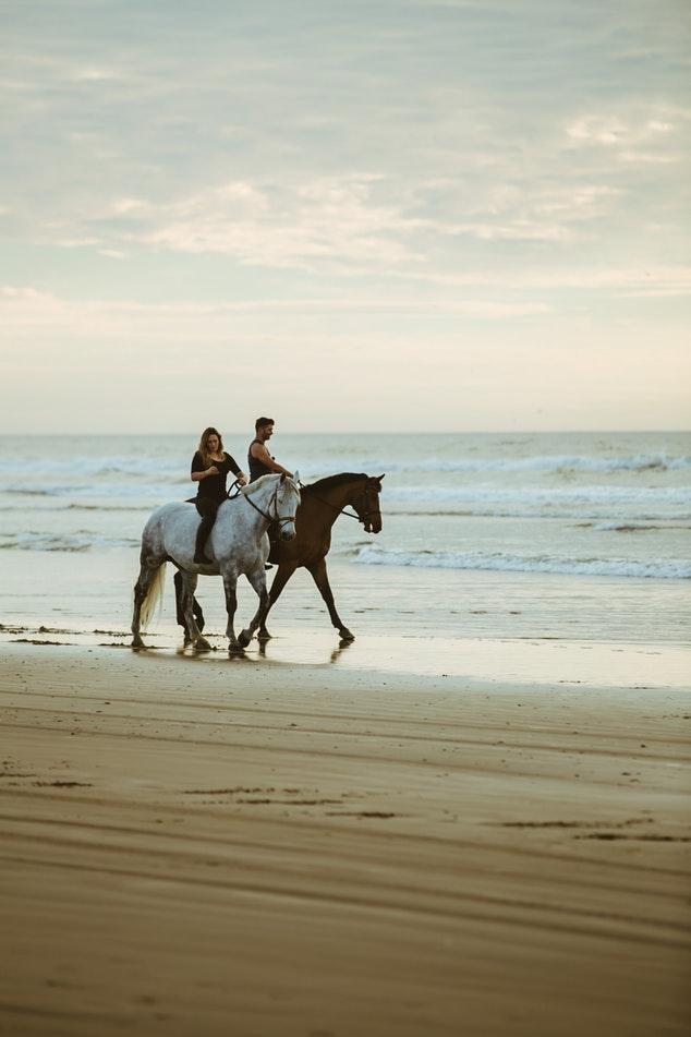 que faire a tenerife - promenade à cheval sur la plage