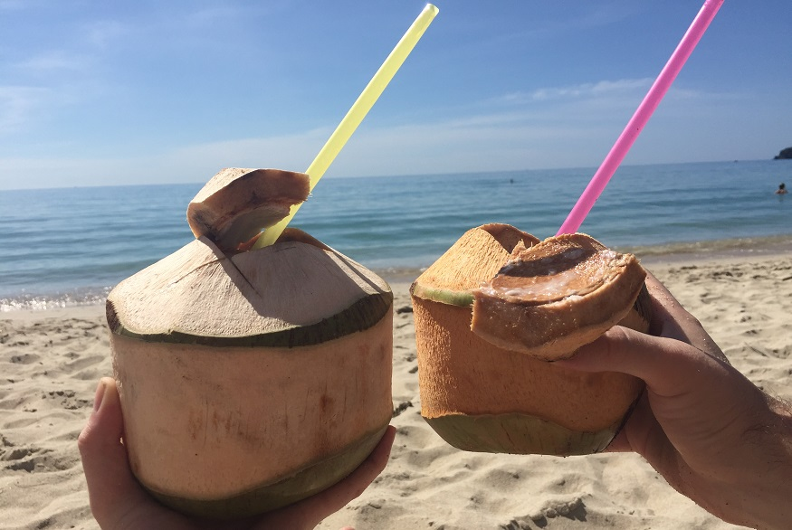 backpackig thailand - coconuts
