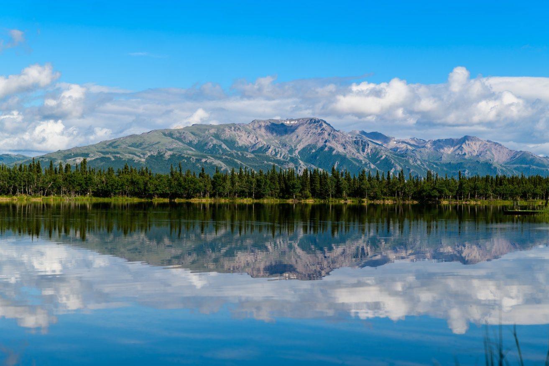paesaggi di montagna - Denali USA