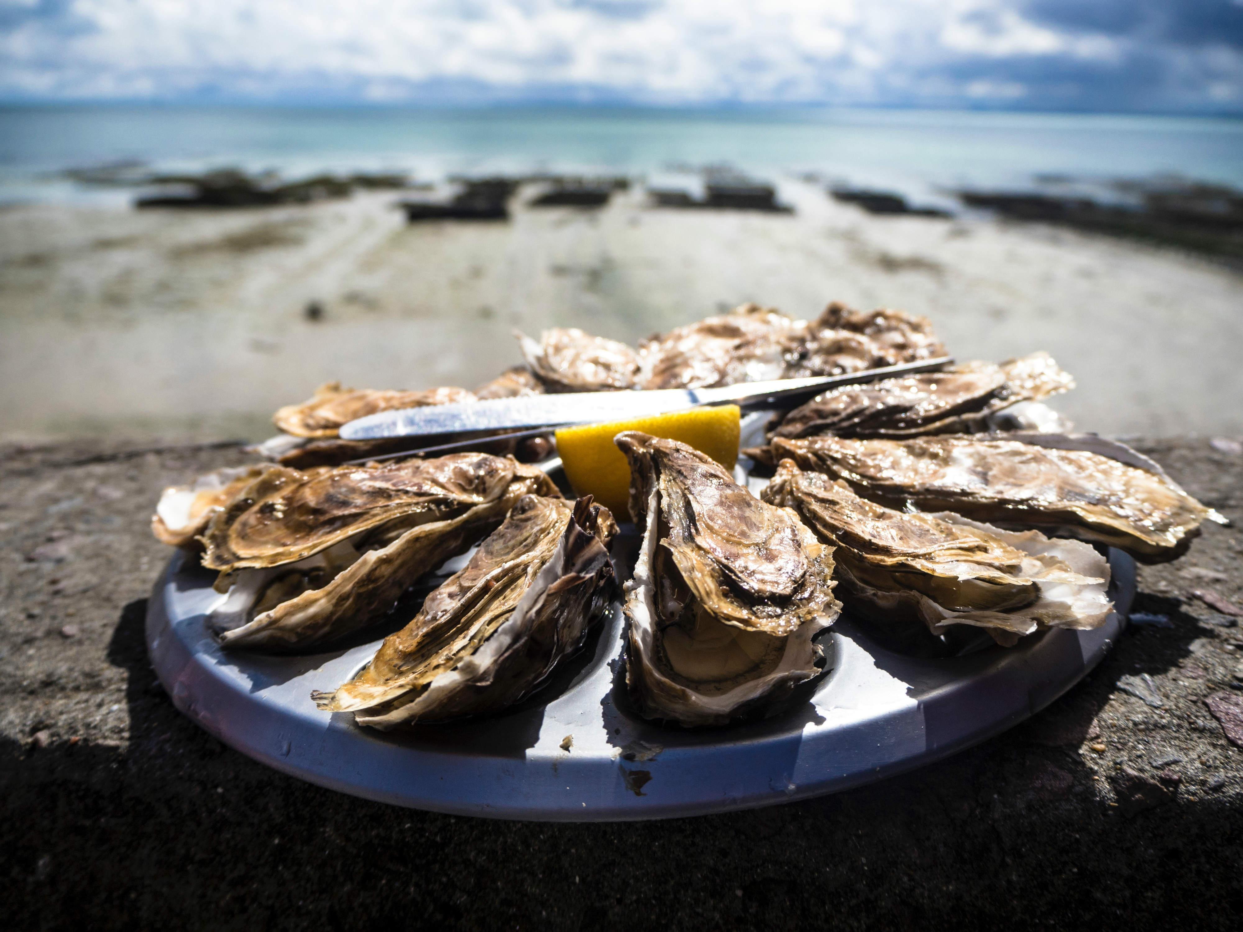 Normandia cosa vedere - piatto di frutti di mare a Granville - Tommaso Cantelli via Unsplash