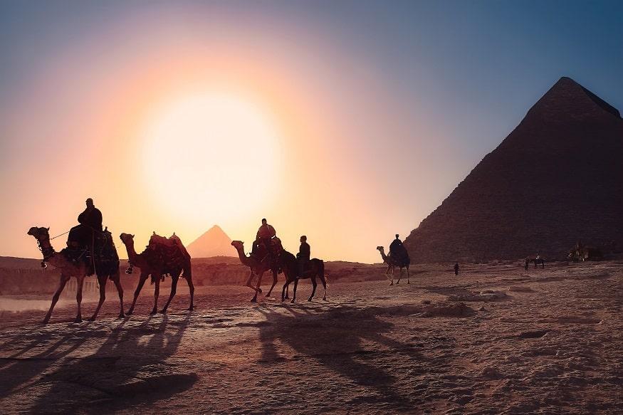 que faire en egypte - chameaux devant les pyramides