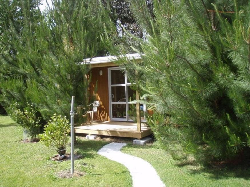 eco-friendly hostels, a lodge at Eco Lodge Pakowhai