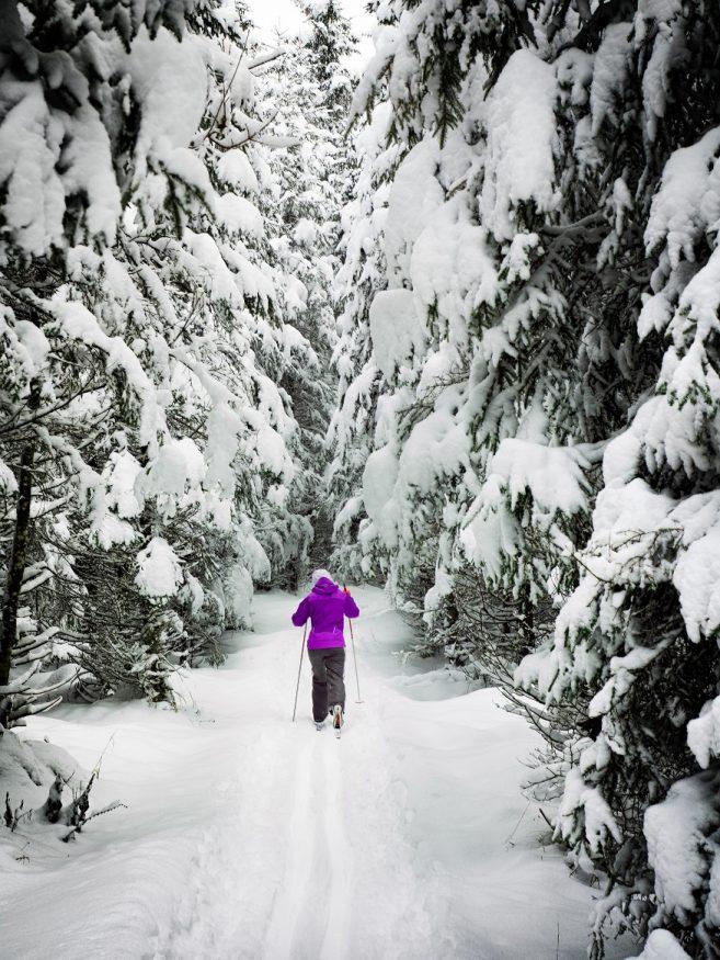 que faire en laponie - personne qui fait du ski de fond