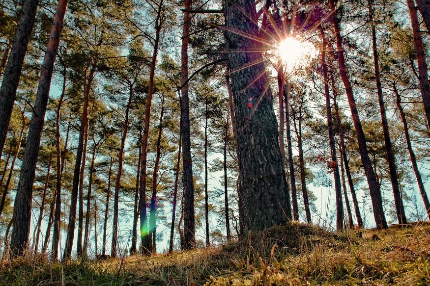 Sehenswürdigkeiten Belgien Eifel Naturpark